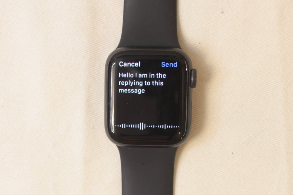 Apple Watch Series 5 voice input