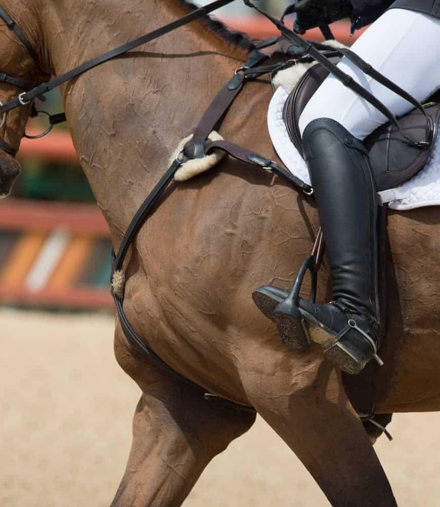 An equestrian riding a horse.