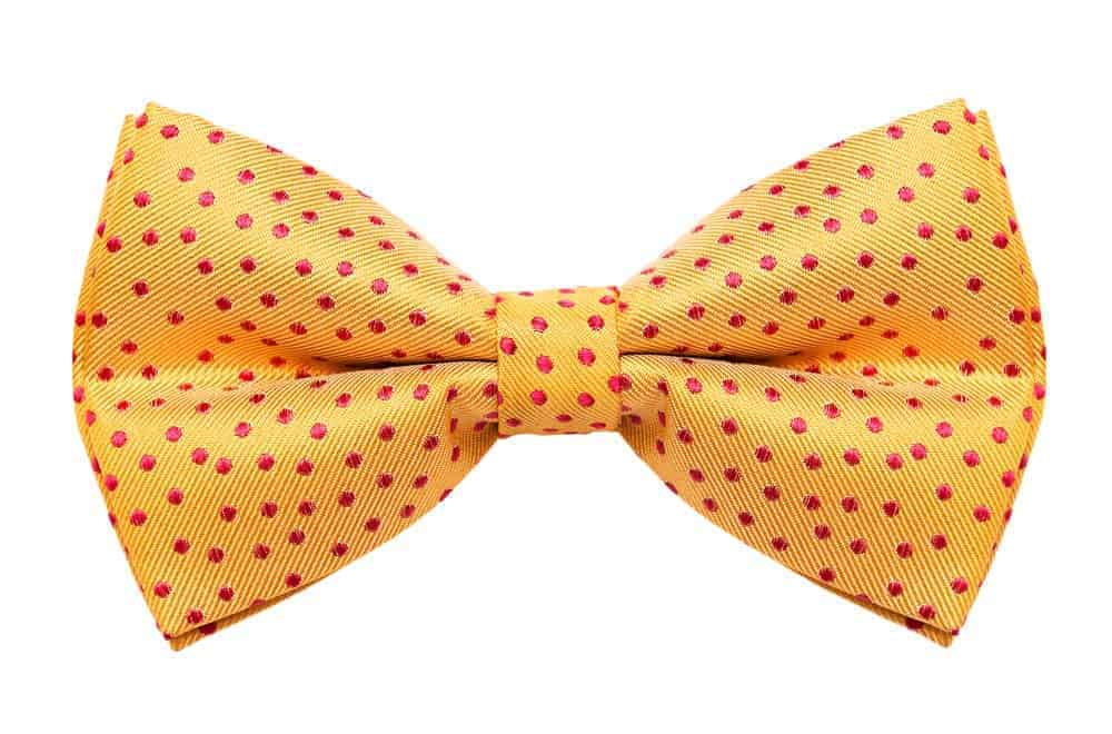 A yellow polka-dotted butterfly bow.