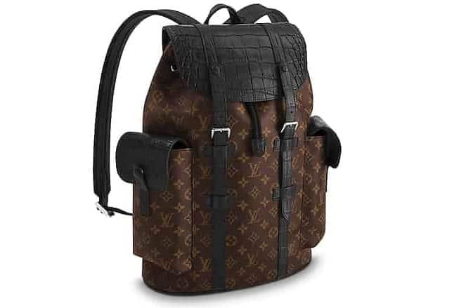Louis Vuitton backpack N93491 in brown.