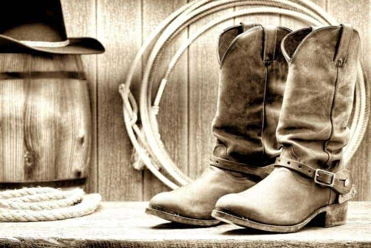 A pair of cowboy boots.