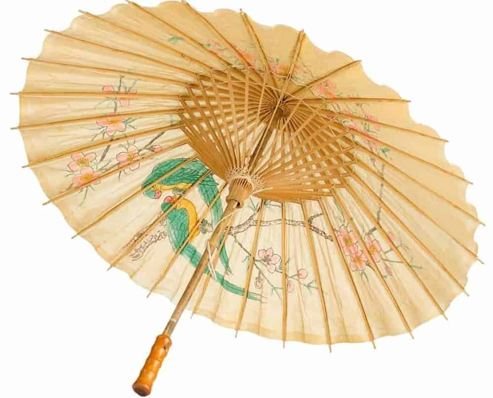A colorful paper umbrella with images of birds and flowers.