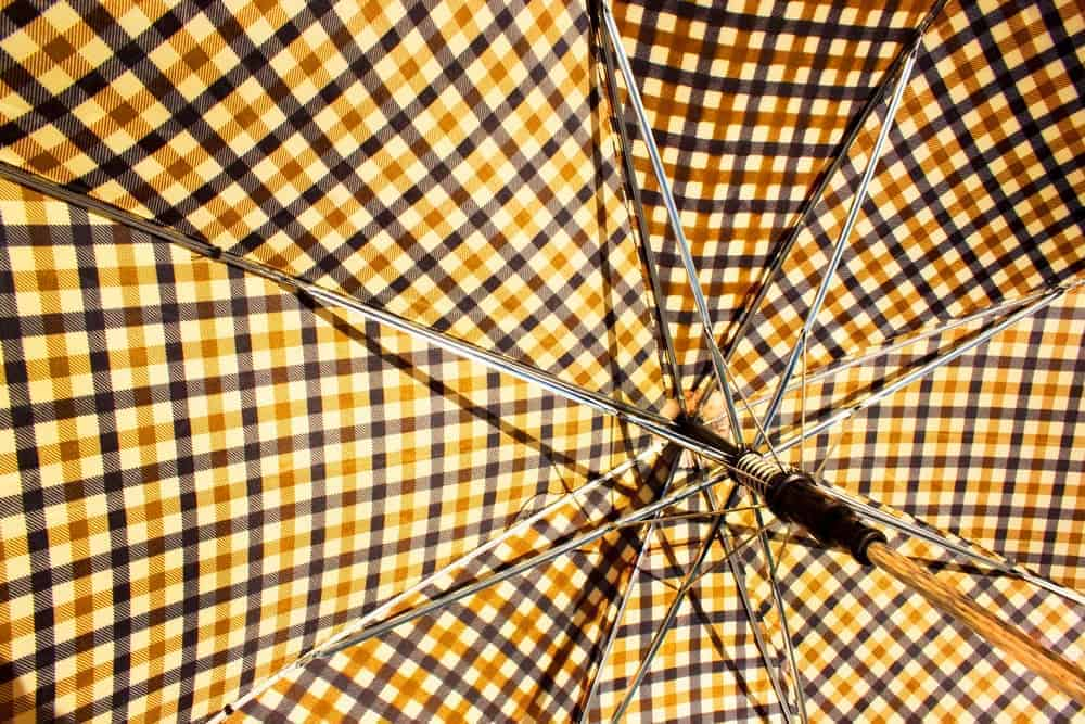 This is a closer look at the interior of an umbrella.