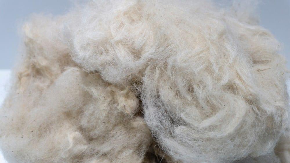 A close look at a clump of organic wool yarn.