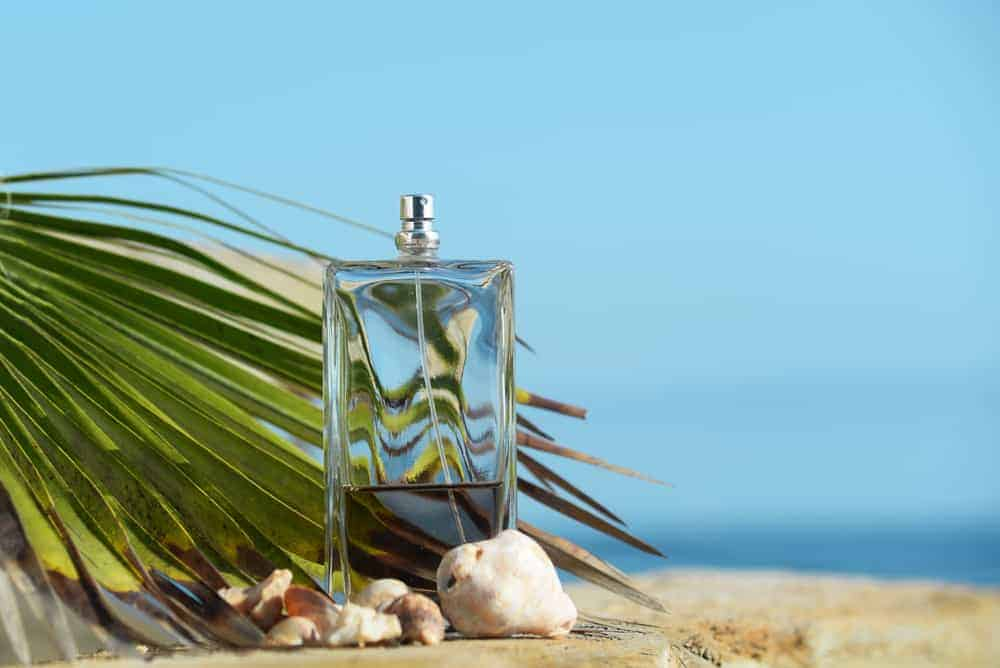 Perfume with palm leaf and white shells.