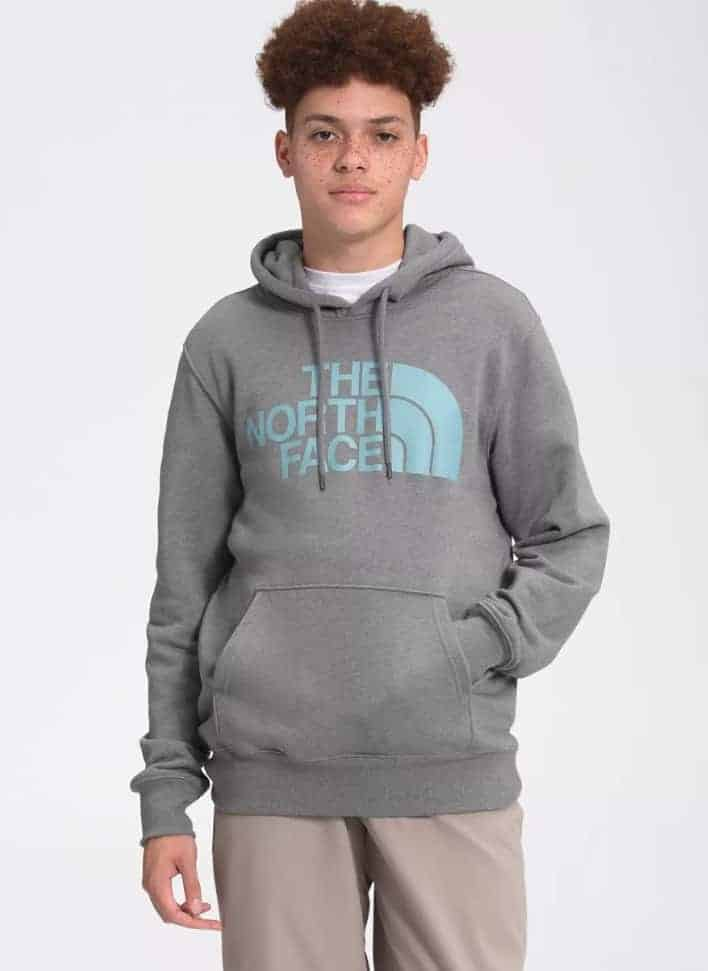 The The North Face Half Dome Pullover Hoodie in gray.