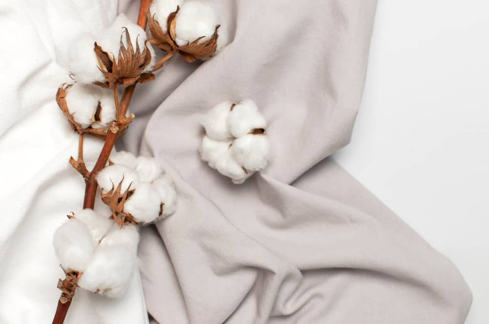 This is a close look at fresh cotton and a cotton fabric.