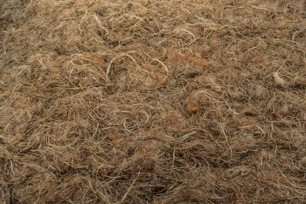 This is a close look at course Bast fibers.