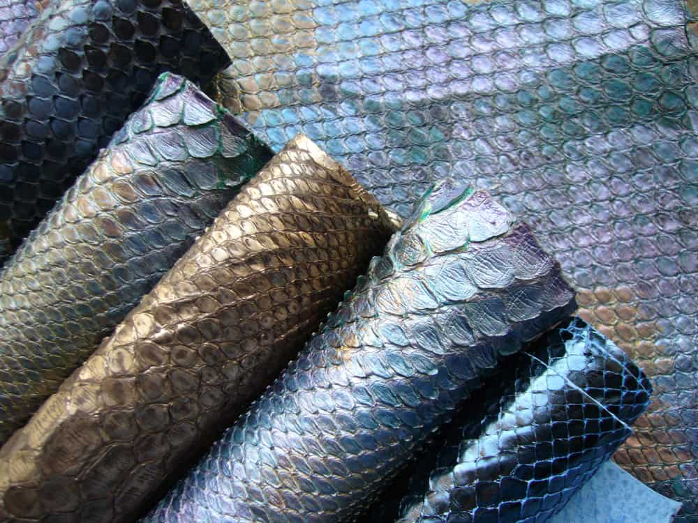 This is a close look at a bunch of various Snake Leather on display.