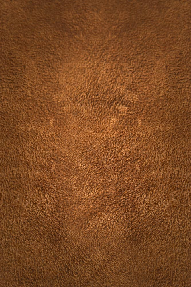 This is a genuine piece of deerskin suede leather.