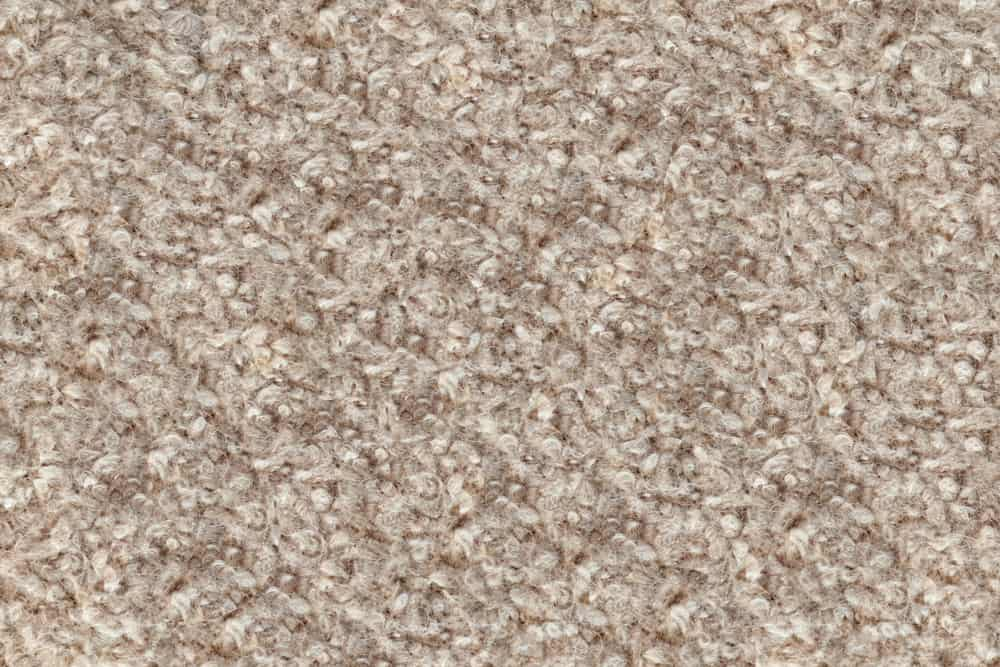 This is a close look at a beige Boiled Wool fabric.