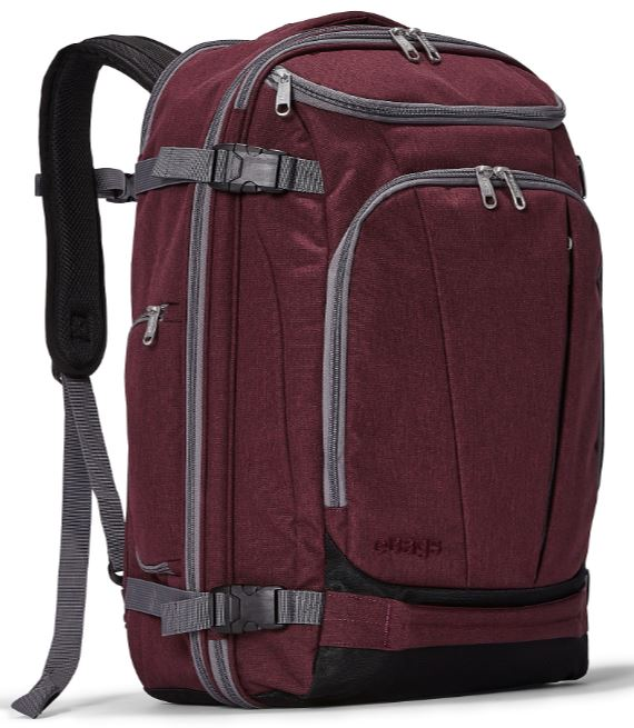 The Mother Lode Travel backpack from Ebags.