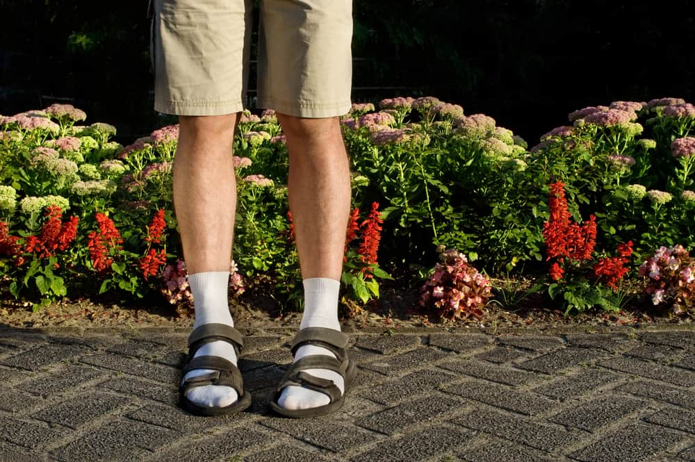 This is a close look at a man wearing khaki shorts, socks and sandals.