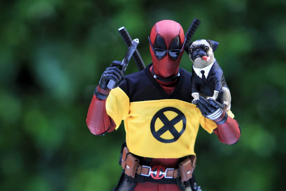 This is a close look at a Deadpool action figure.
