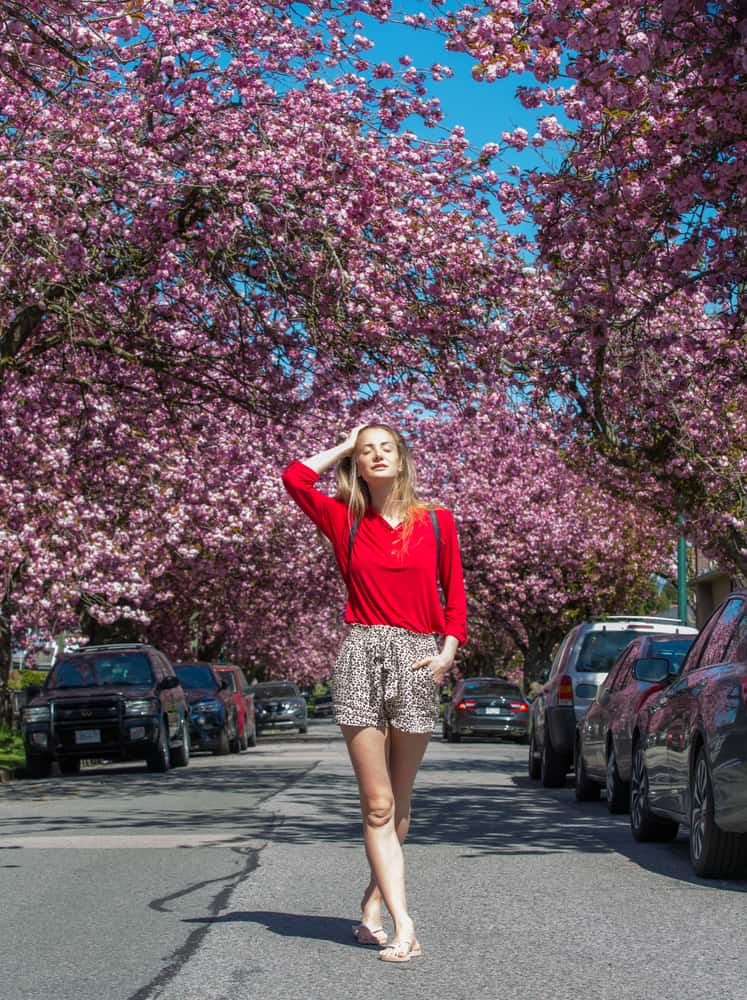 A woman wearing a pair of shorts walking at a street lined with pink blossom trees.