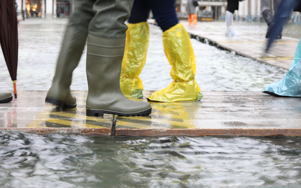 People wearing plastic gaiters and rubber boots walking on wooden platforms.