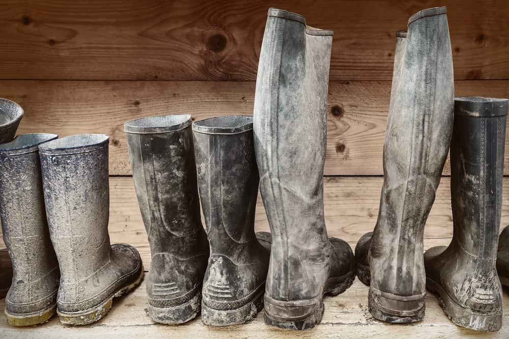 A close look at a row of black rubber boots.