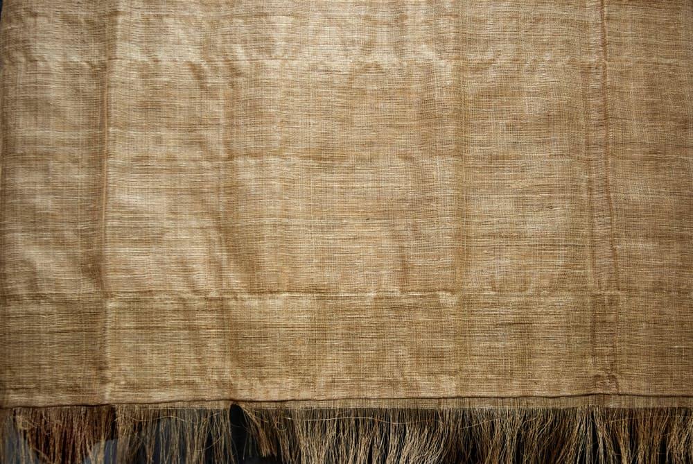 This is a close look at a piece of muga silk.