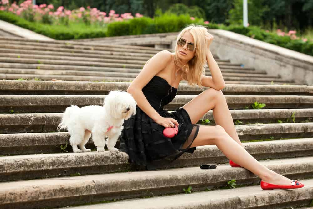 A woman walking her dog while wearing a little black dress.