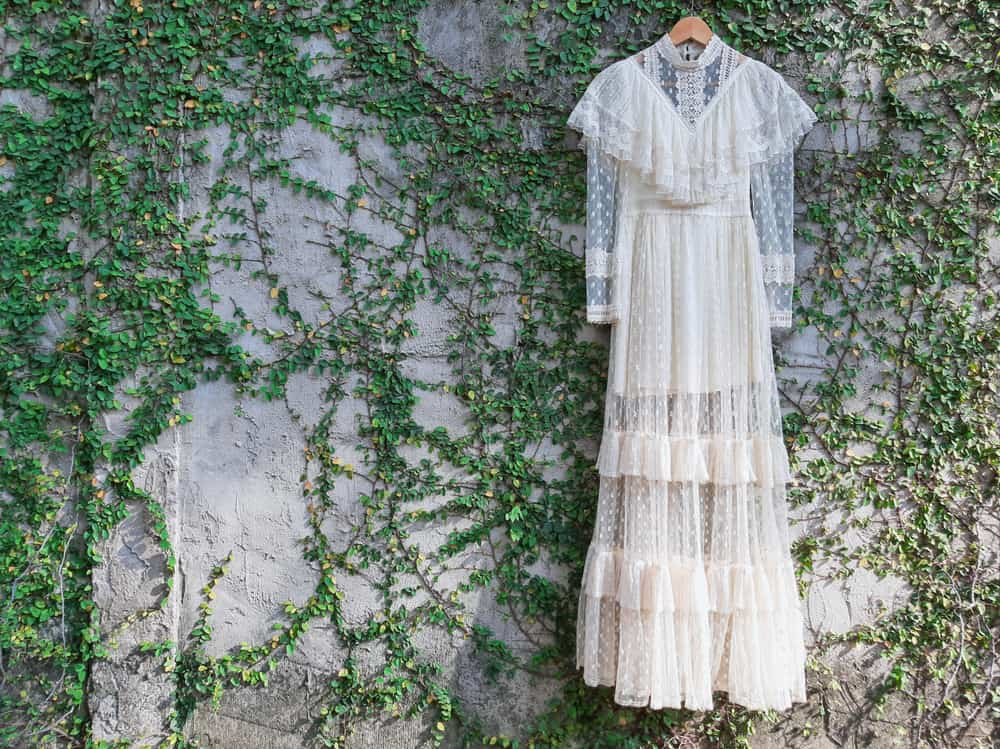 A lacy wedding dress hanging against a bare wall adorned with creeping plants.