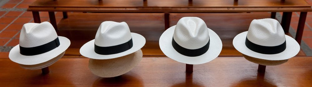 This is a row of panama hats on hat stands.