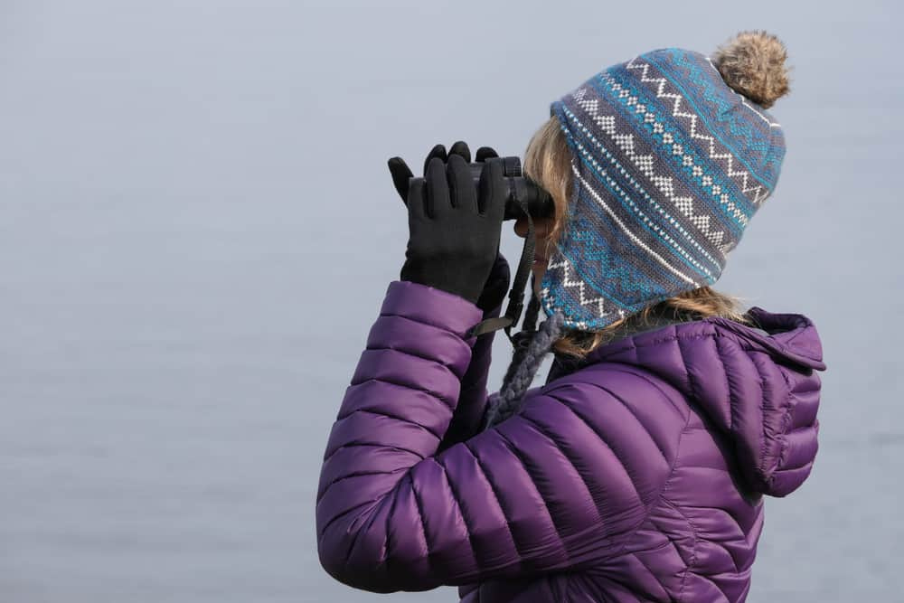 Woman in a purple jacket and bobble hat looking though binoculars.