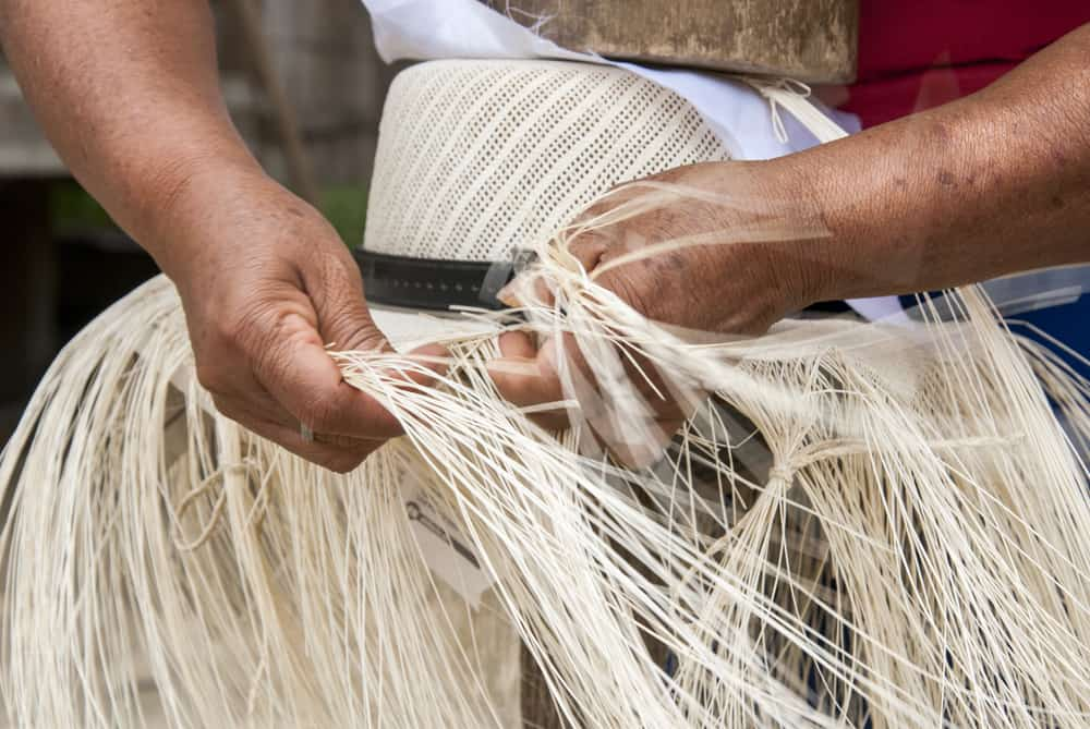 This is a close look at a man weaving a panama hat.