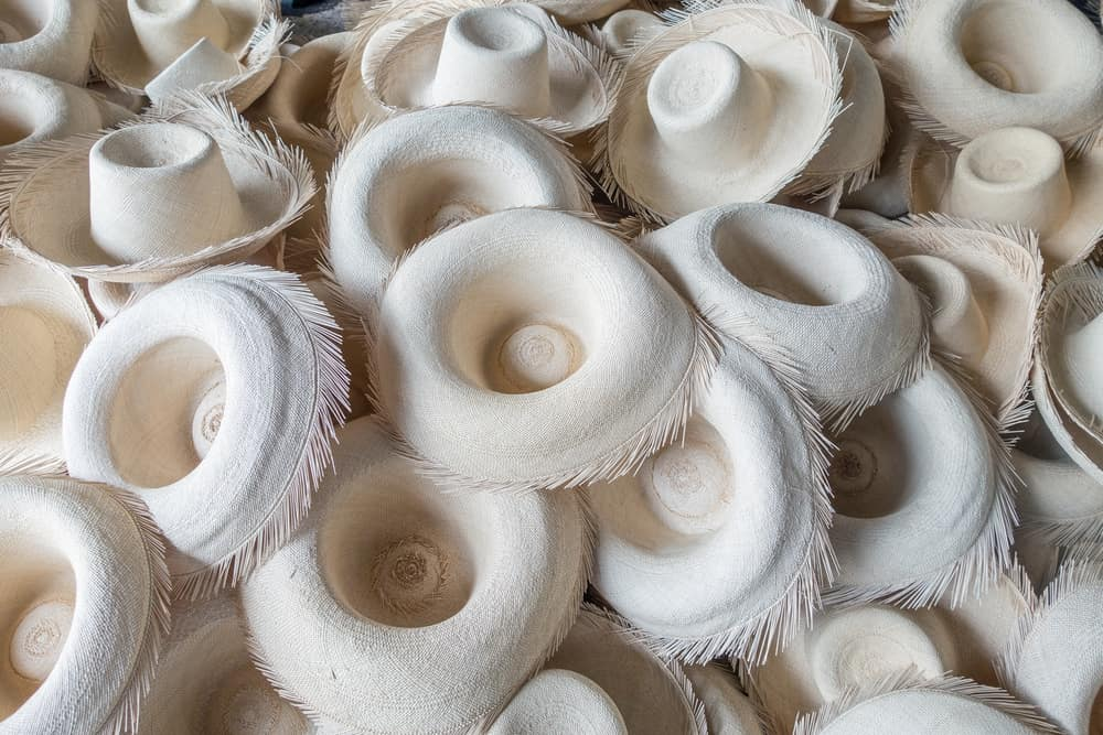 This is a bunch of freshly-weaved panama hats in the middle of production.